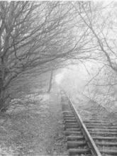Gilbert Verhoeven spoorbrug bij waalwijk lookatie364 kunstpost den haag mariahoeve kunst fotografie
